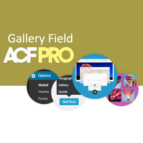 Advanced Custom Fields Gallery Field Addon